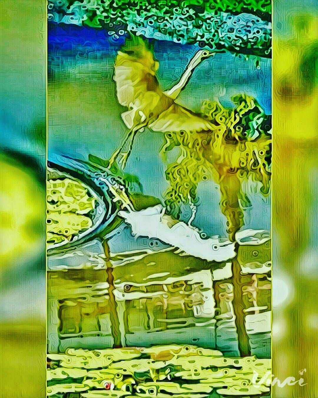 "💝 Lovely Egret 🐦~"" # Reflection # MaxEditing # Egret #VideoShots 🎨🌈 *#Binary @Vinci.cam ~ x 41*+%+Sizes Trendy Filters for quick photo Editing using Artificial Intelligence. #Vinci #Art175Now #VinciApp #VinciEffects #Vinci_Show"