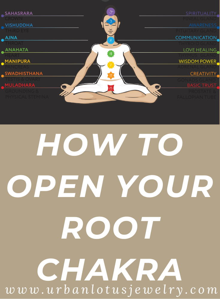 26++ Where is your root chakra trends