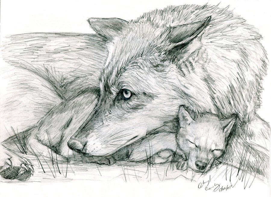 Wolf And Pup By Silvercrossfoxdeviantart On DeviantART