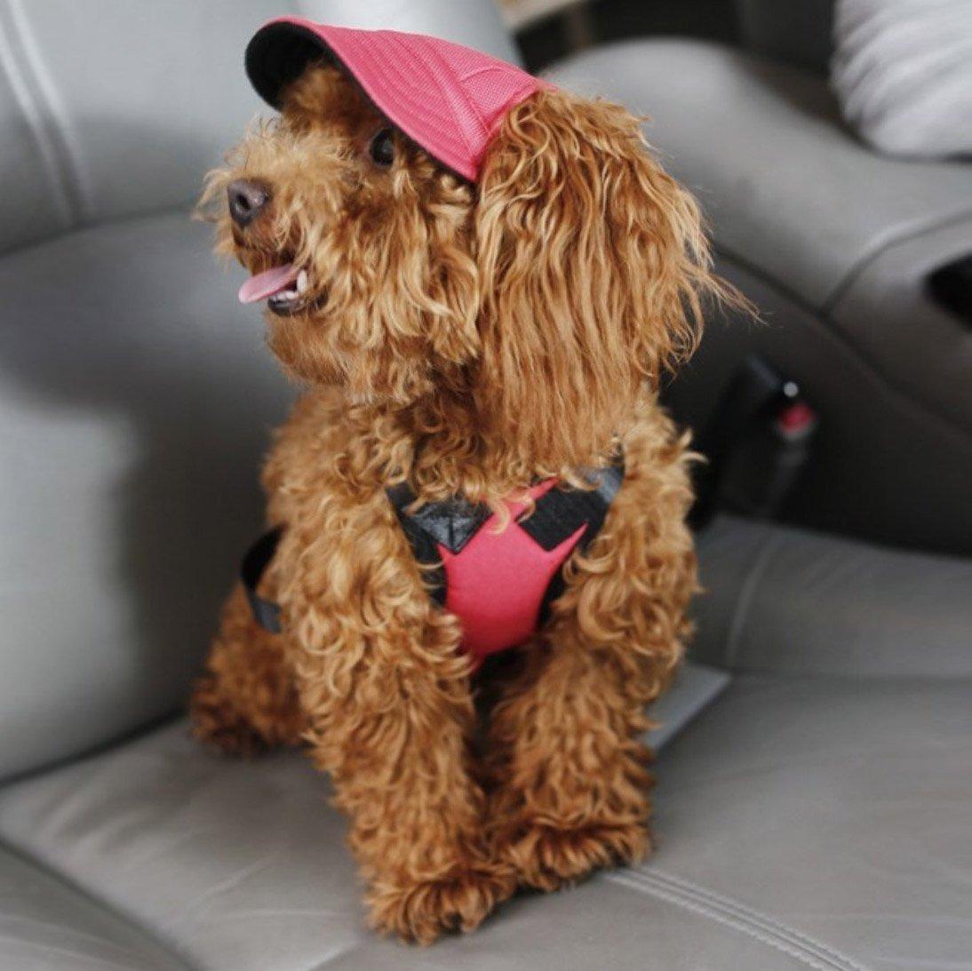 Custom Made Machiko Dog Hats Adorable Puppy Dog Eyes Dogs