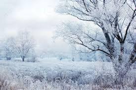 Risultati immagini per paesaggio invernale