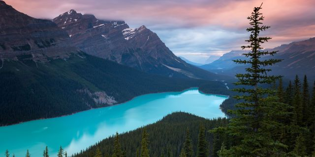 Peyto Lake Canada Mountains Wallpaper Hd Nature 4k Wallpapers Images Photos And Background Wallpaper Canada Nature Wallpaper Mountain Wallpaper