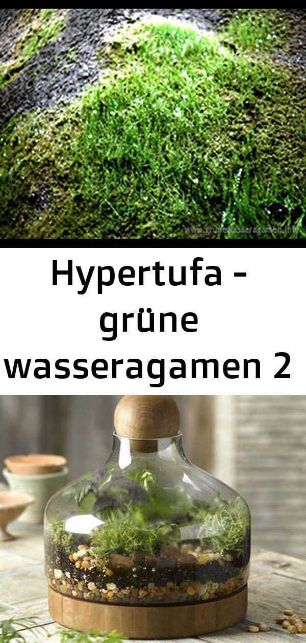 Hypertufa – grüne wasseragamen 2
