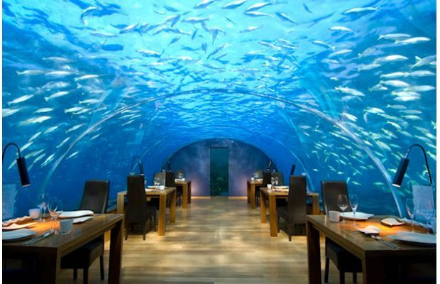 Restaurants In Atlantis Hotel Bahamas Best