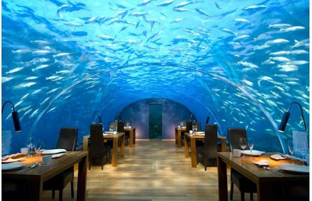 Restaurants In Atlantis Hotel Bahamas Best Restaurants Near Me
