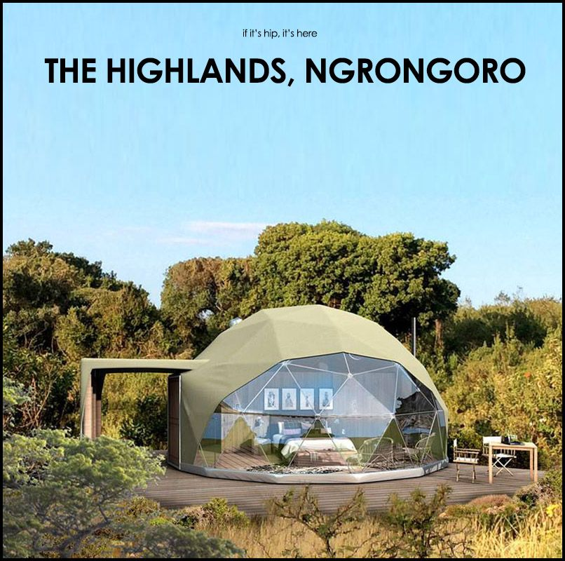 Coolest tents ever! Wildlife and Wild Tents The Highlands Ngorongoro - if itu0027s hip itu0027s here & Wildlife and Wild Tents: The Highlands Ngorongoro opens in March ...