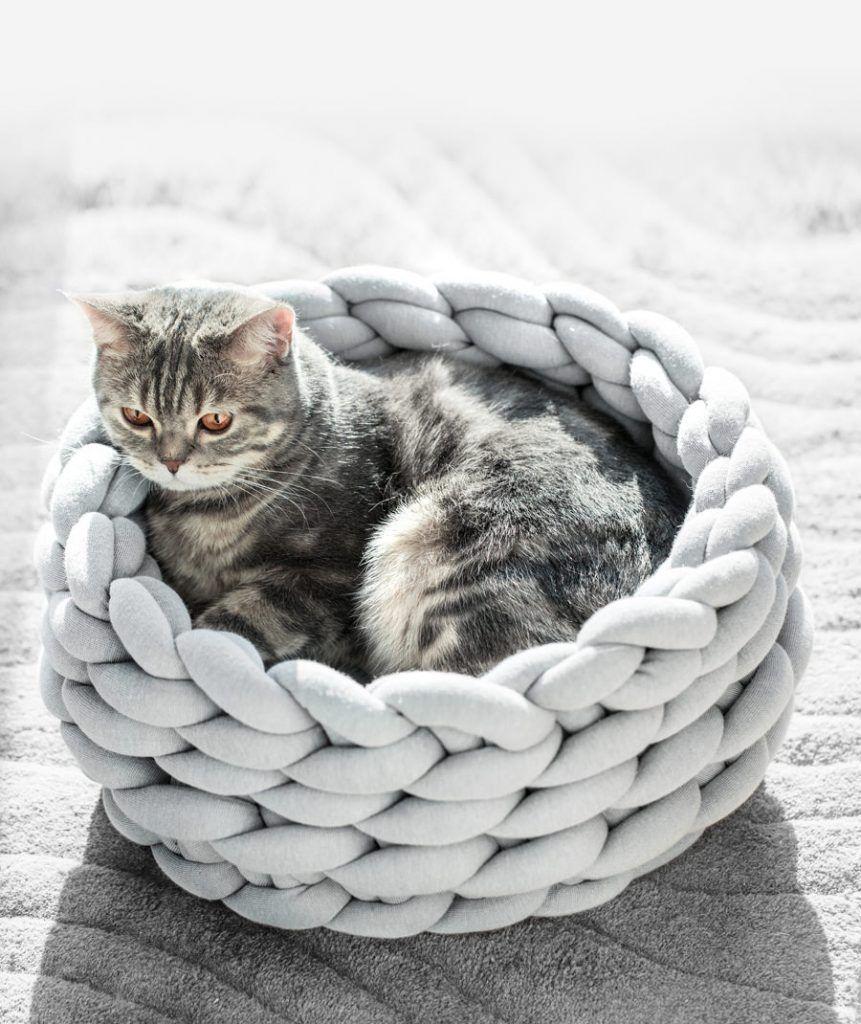 Ohhio braid cat bed diy kit ohhio in 2020 cat bed cat