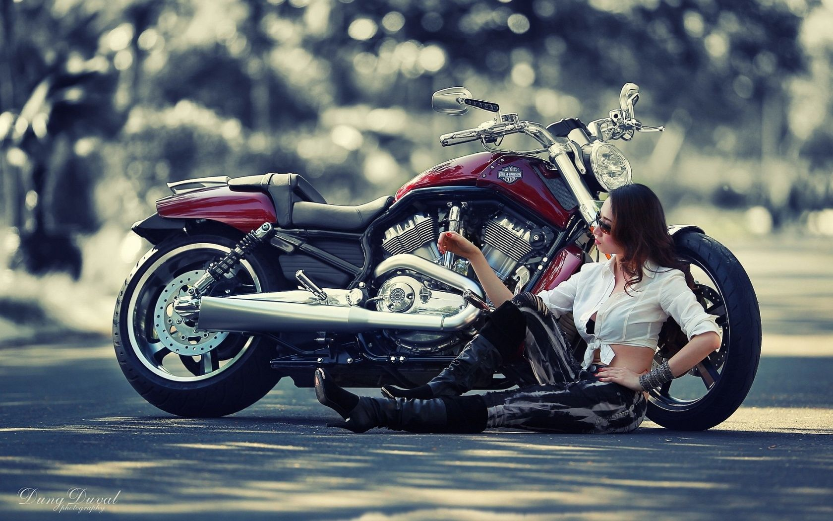 Free Motorcycle Wallpapers Screensavers Yahoo Image Search Results With Images Harley Davidson Wallpaper Harley Davidson Posters Harley Davidson Motorcycles