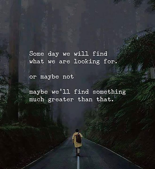 Someday We Will Find What We Are Looking For Or Maybe Not Maybe