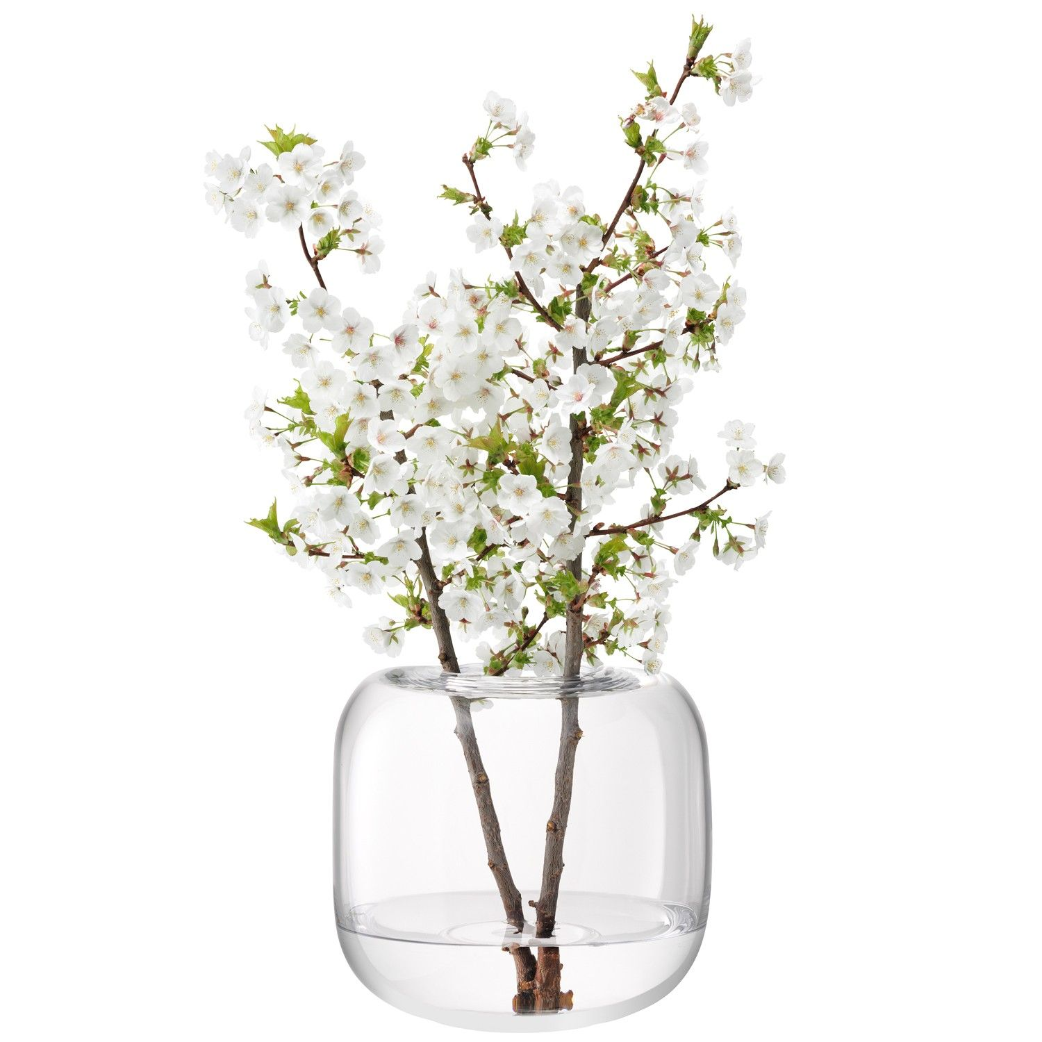 Kitchen lsa international simple clear vase in soft cube shape kitchen lsa international simple clear vase in soft cube shape would pair nicely with reviewsmspy