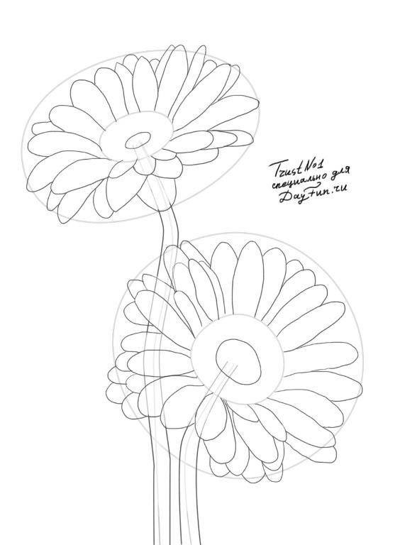 How To Draw Gerberas Step By Step Daisy Drawing Flower Drawing Flower Drawing Tutorials