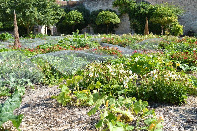 Le Chateau Du Rivau Et Le Potager De Gargantua Jardin Potager