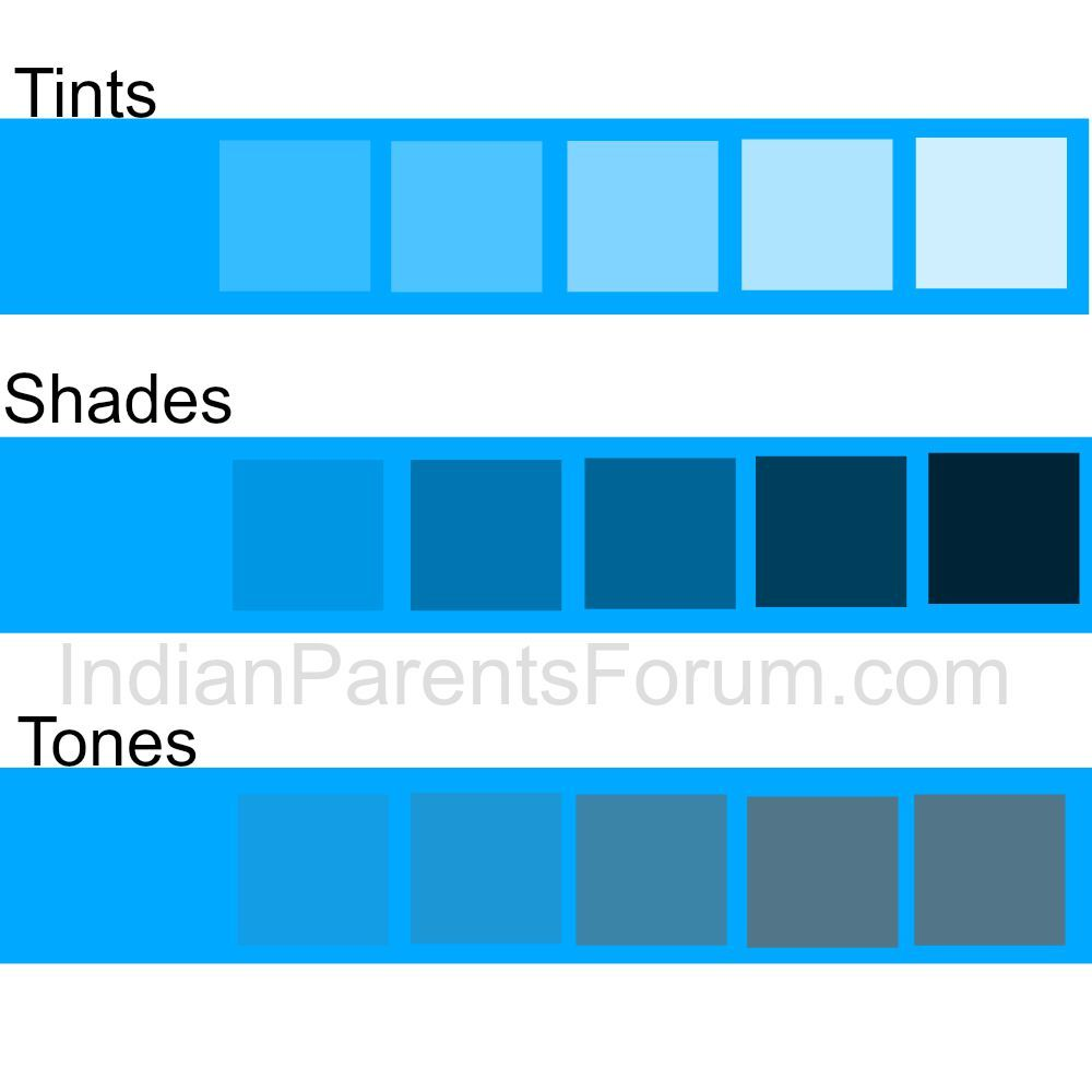 Shades Of Blue Paint Hue Vs Tint Vs Shade Vs Tone  Color Matching Craft  Paint Chips