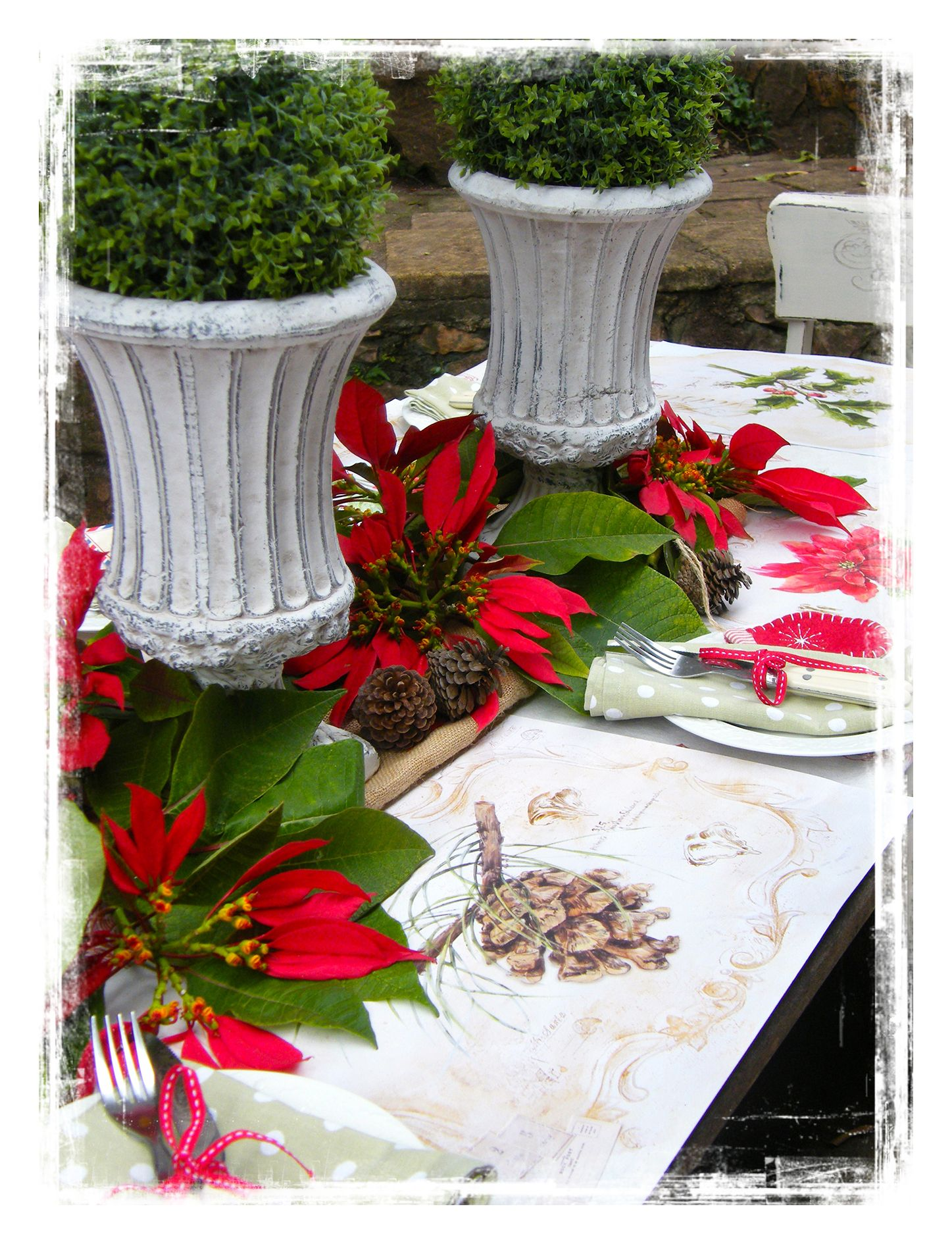 u0027A Botanical Christmas  - paper tableware from .laurianadesigns.co.za  sc 1 st  Pinterest & A Botanical Christmas