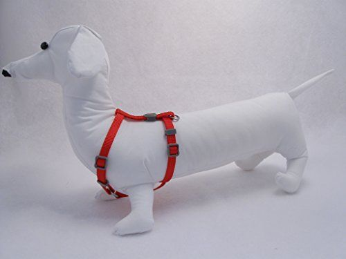 Pin On Dogs Harness