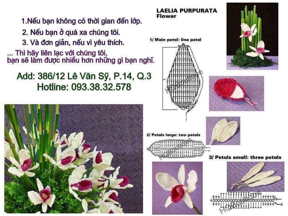 Pin de Janeta en crochet, patrones gratis | Pinterest | Flor, Flores ...