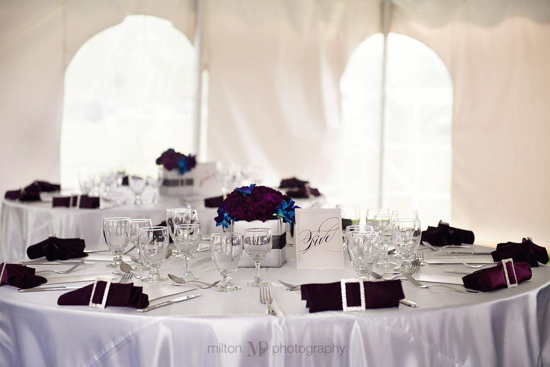 Blue and purple wedding decor. Tent wedding | Jordyns Graduation ...