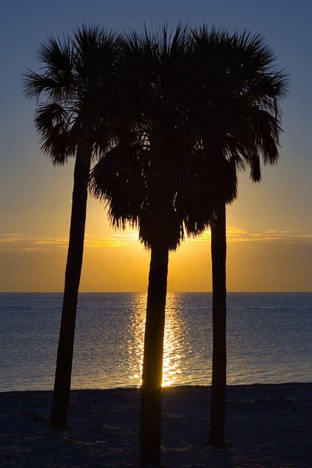 Gulf Shores Sunset, Courtesy Of Three Palms Vacation