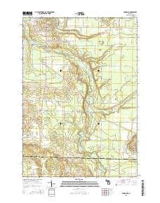 Benzonia MI topo map 1 scale 7 5 X 7 5 Minute Historical