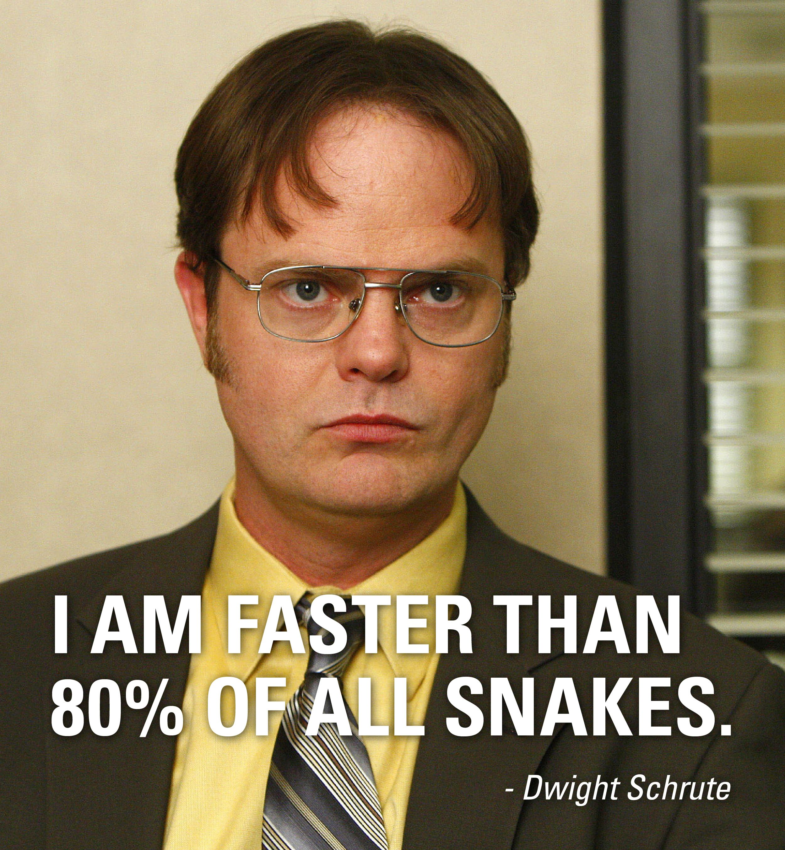 I am faster than 80 of all snakes. Dwight Schrute,