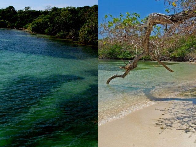 Parque Natural Corales del Rosario y San Bernardo.  foto by Tiketeo.com