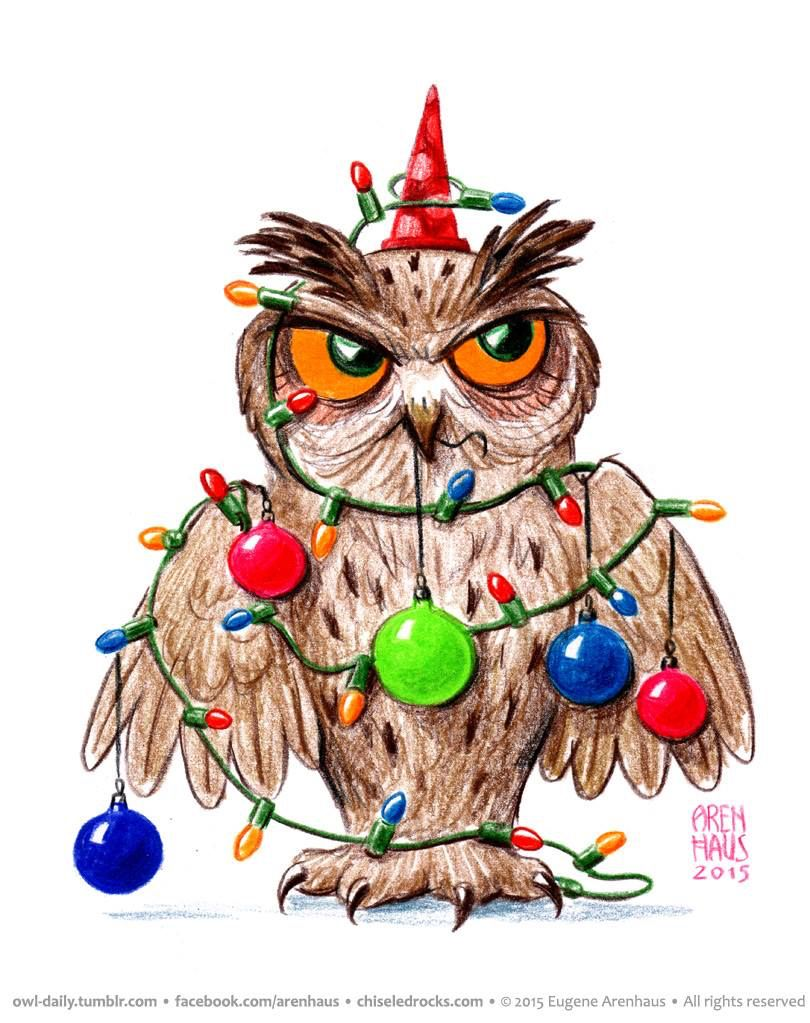 happy new year owl arenhaus