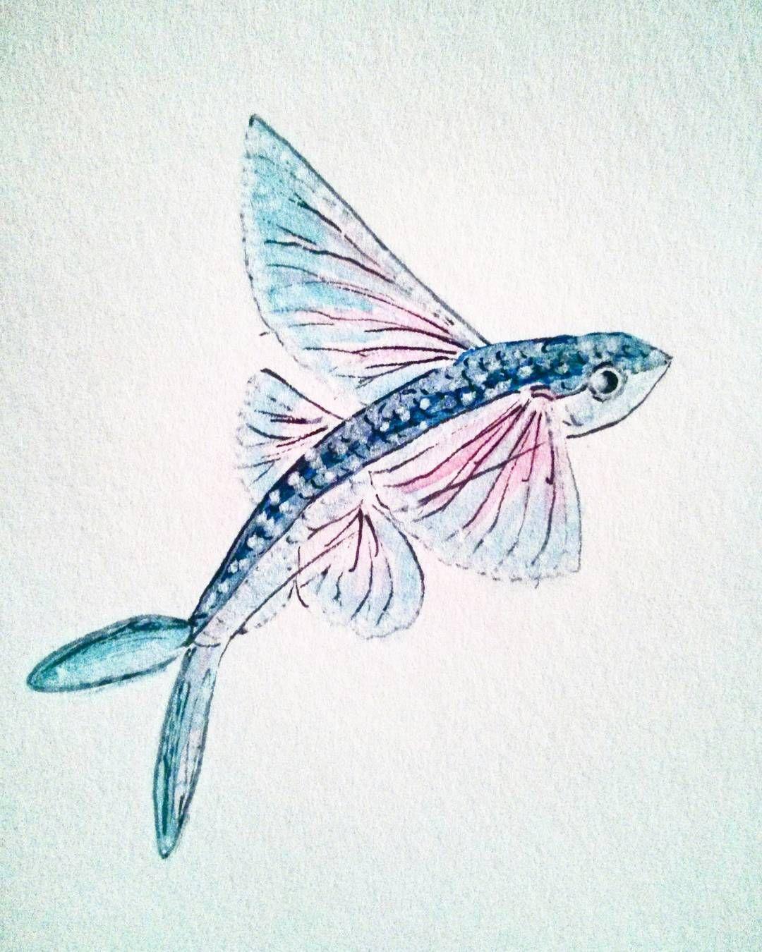 Flying Fish Flyingfish Watercolor Drawing Art Blue Pink Fish Sketch Fish Drawings Watercolor Fish