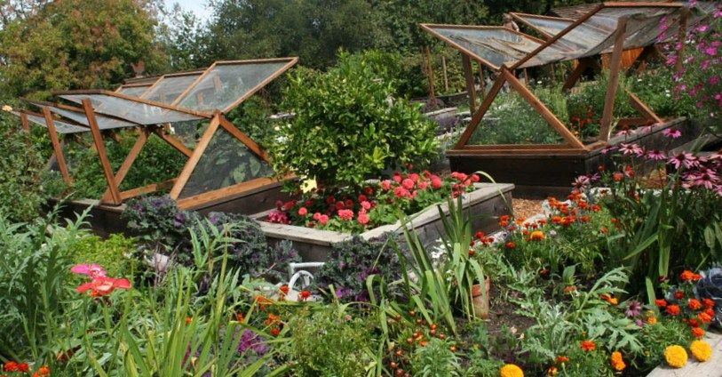 Vegetable Garden Design Vegetable Garden Ideas813 X 424 149 Kb