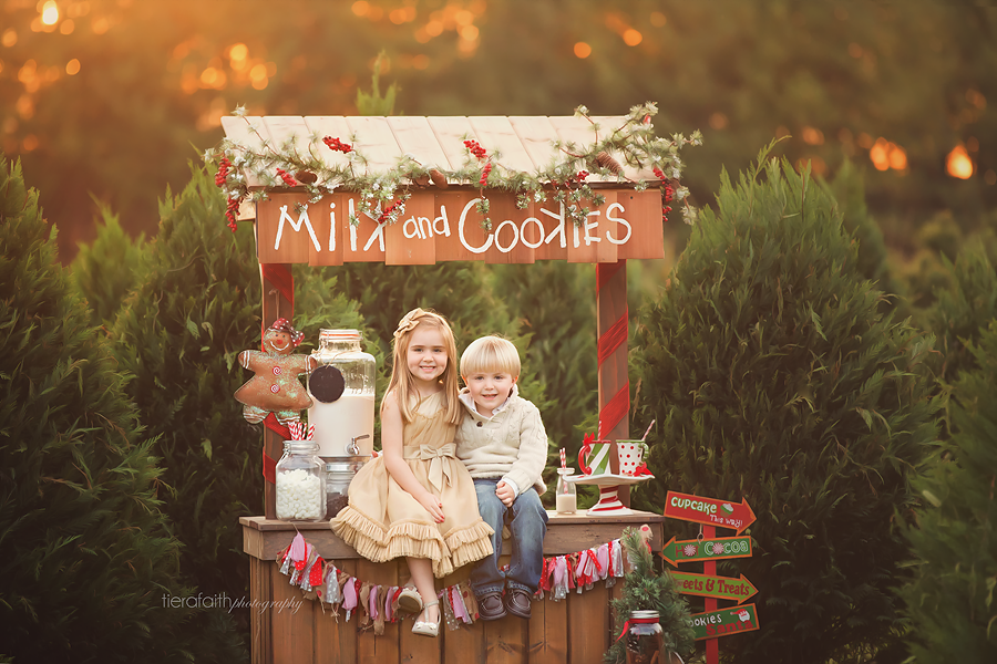 Christmas Mini Session Nashville Child Photographer