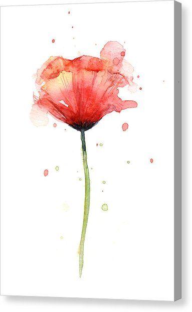 Red Poppy Watercolor Canvas Print Canvas Art By Olga Shvartsur