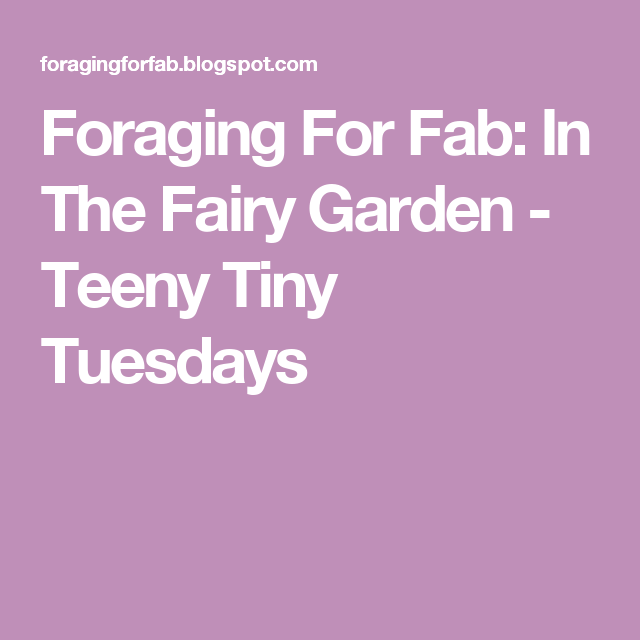 Foraging For Fab: In The Fairy Garden - Teeny Tiny Tuesdays