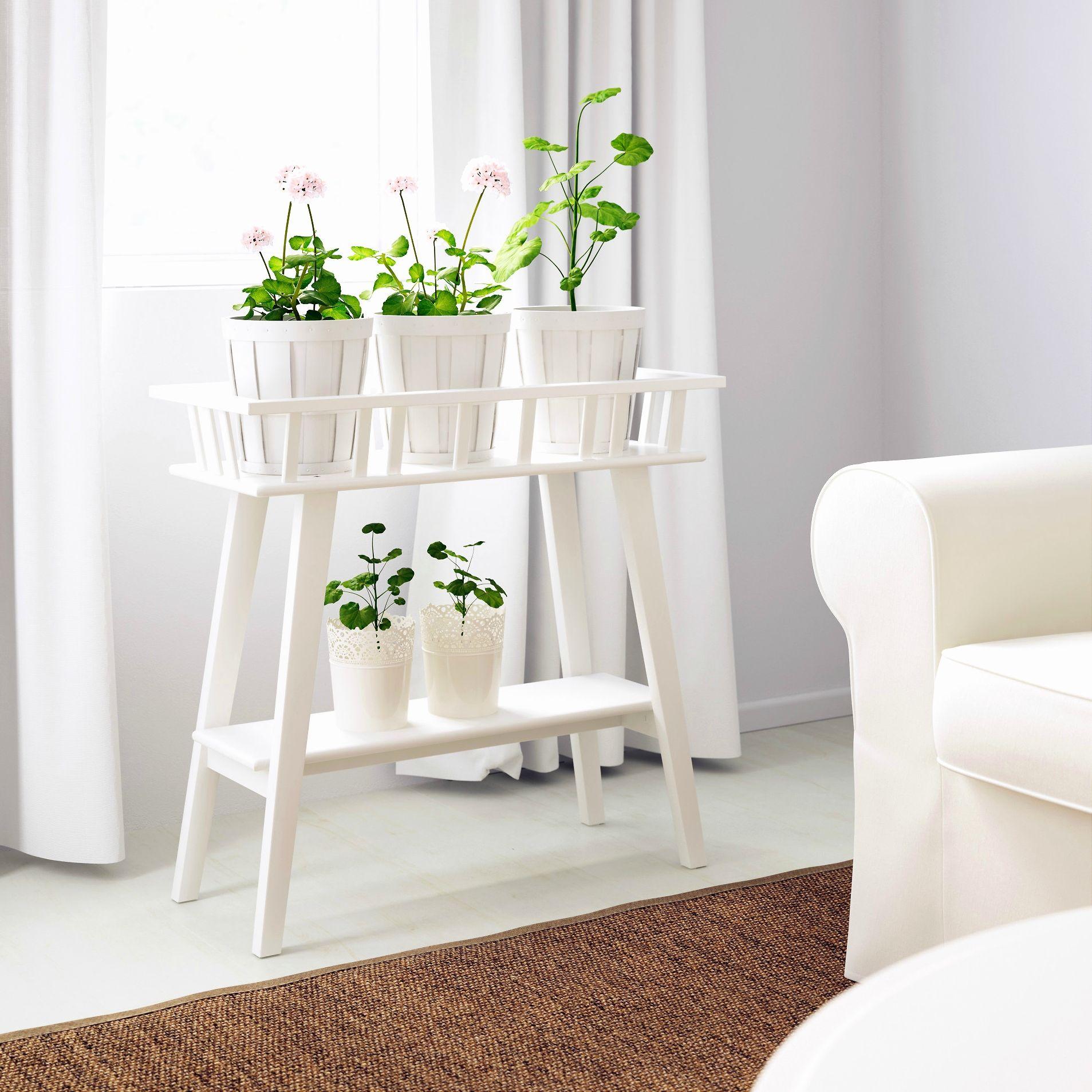 Support Mural Pour Plantes Dintrieur Porte Interieur Toutes Les Idees Sur Decoration