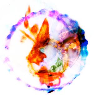 32 Cactus Ooh Ideas Alternative Music Album Art Album