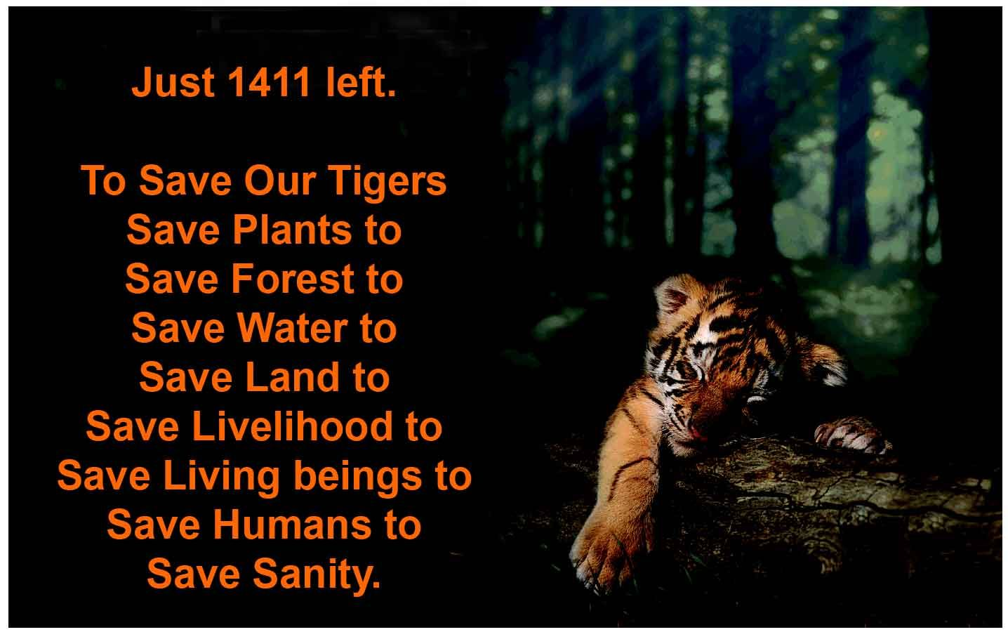 to save our tigers jpg times tiger inspirational quotes days wildlife and nature trail tour to corbett national park in uttarakhand