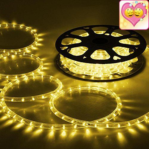 Yescom 50ft Warm White 2 Wire LED Rope Light Outdoor Home Holiday