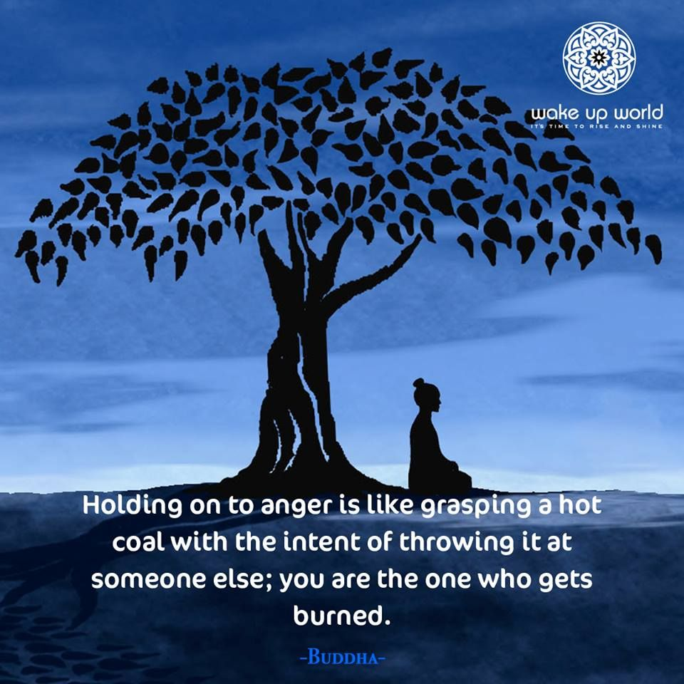Pin By David Nakamaejo On Buddhism Life Quotes Realization Quotes