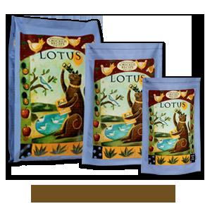 Natural healthy cat food recipes 26 Healthy Natural Organic Dry Cat Food Ideas