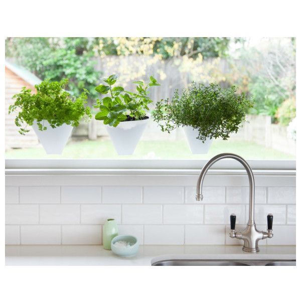 Hanging gardens planters (two pack) ($18) ❤ liked on Polyvore featuring home, outdoors, outdoor decor, outdoor garden decor, herb garden planter, garden decor, garden planters and garden patio decor