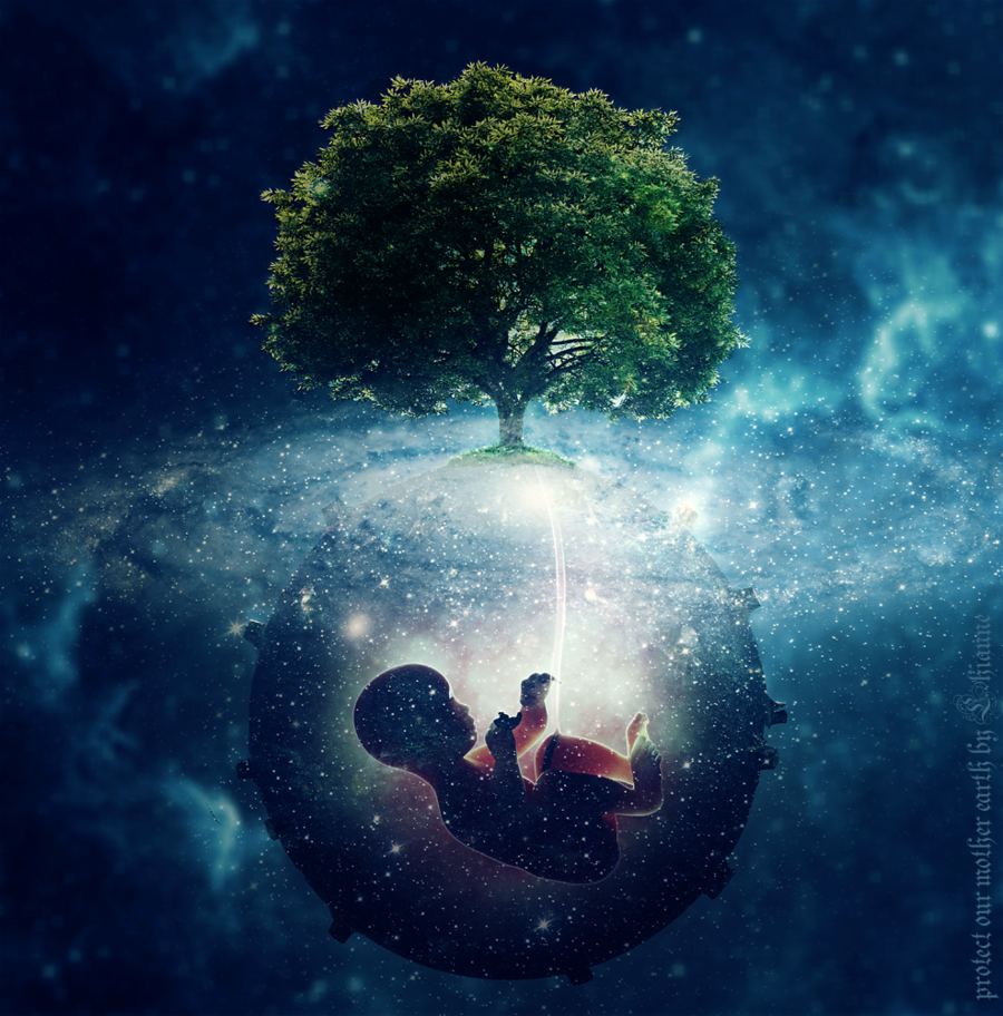 Ayahuasca and Iboga – Messengers of Truth from Mother Earth