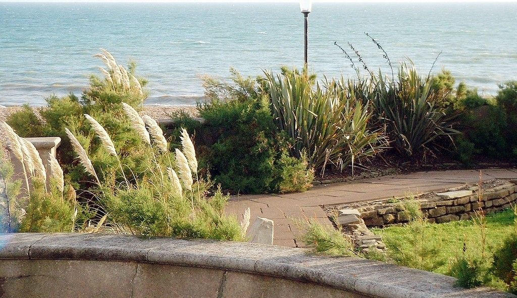 Seaside Gardens Catch The Wave With Gardening