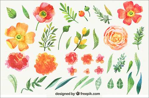 かわいい手描き素材が全部無料 花や葉や草が水彩タッチで描かれたベクター素材 Cover Flower 花 イラスト 花 イラスト 無料 水彩 花