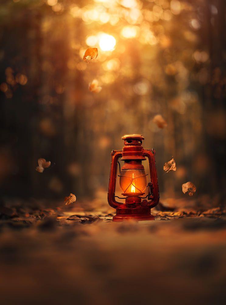 light of autumn by ashraful arefin on 500px autumn fall