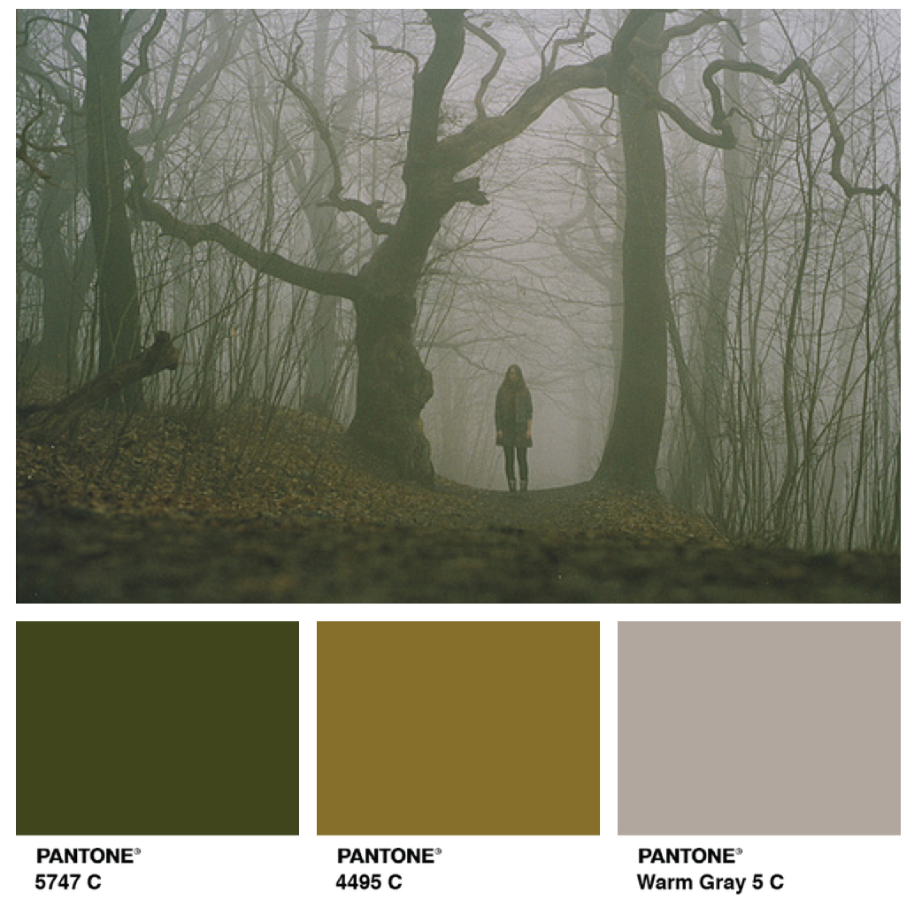 Green olive grey pantone green colour palette paint - Olive green and grey ...