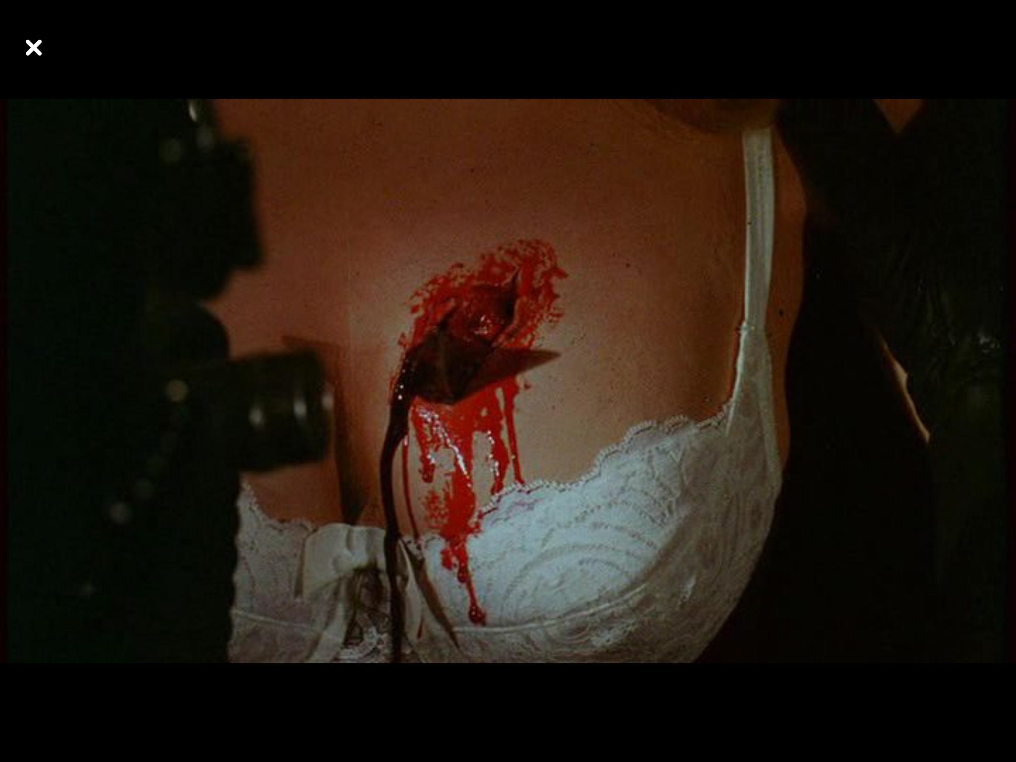 My Bloody Valentine 1981.