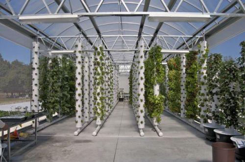 Diy Aeroponic Growing System Unlike Aquaponics And 400 x 300