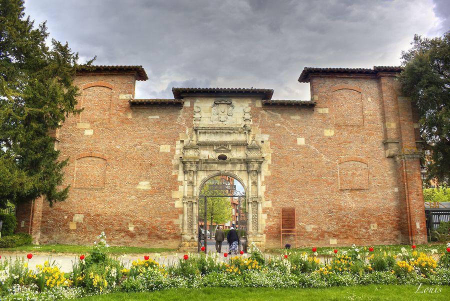 Jardin des plantes - Toulouse | Plante jardin, Toulouse et ...
