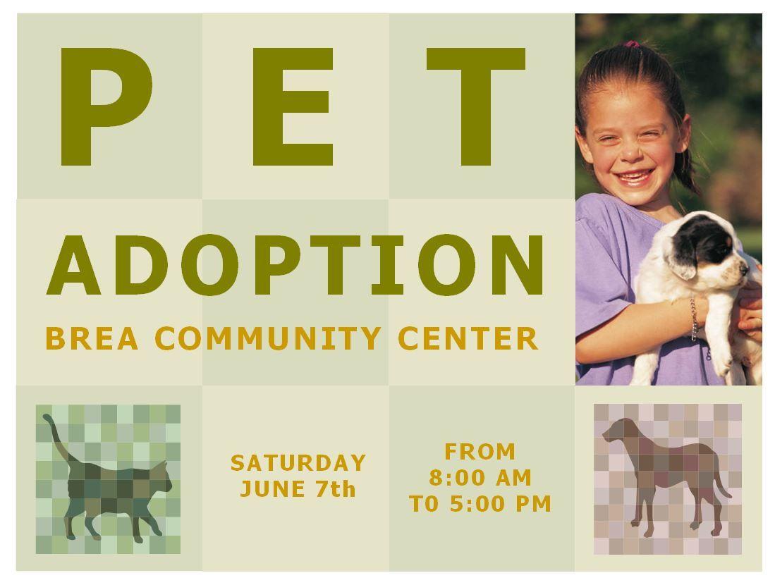 Pet Adoption Template Pet Adoption Flyer Template Pet Adoption Adoption Dog Adoption