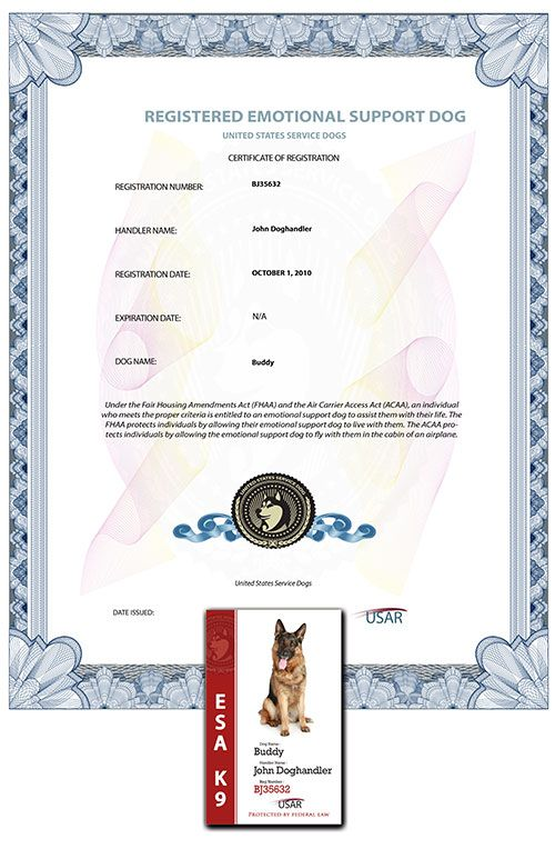 dog support dogs emotional certificate basic