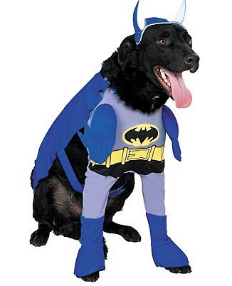 This One Is For Eric But Buddy Boy Would Look Good In It For Halloween Http Halloweencostumesi Pet Halloween Costumes Batman Dog Costume Batman Dog