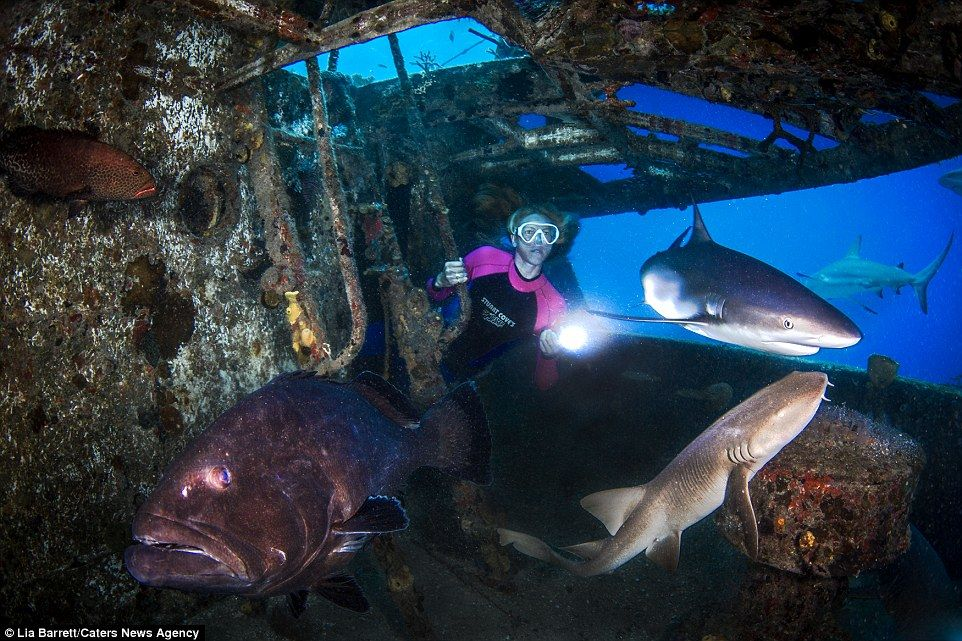 Parkinson explores the shipwreck during a photo shoot with underwater photographer Lia Bar...